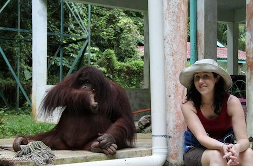 Jackie the Orangutan