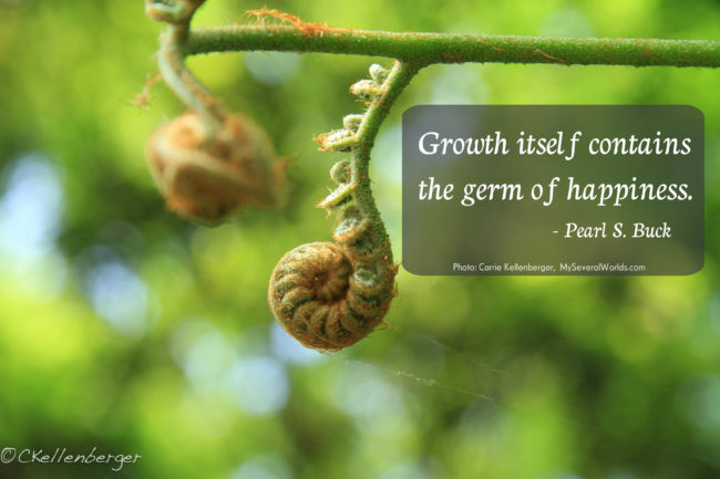 Quote by Pearl S. Buck