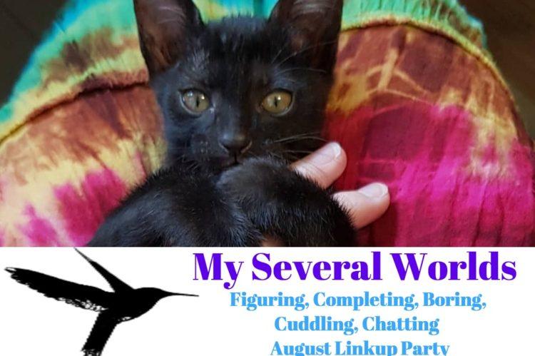 Cuddling Black Kitten