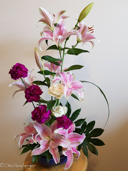 Stargazer arrangement
