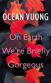 LGBT poetry debut novel - Ocean Vuong