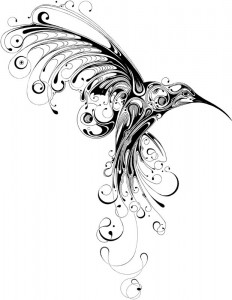 Hummingbird by Scott Si