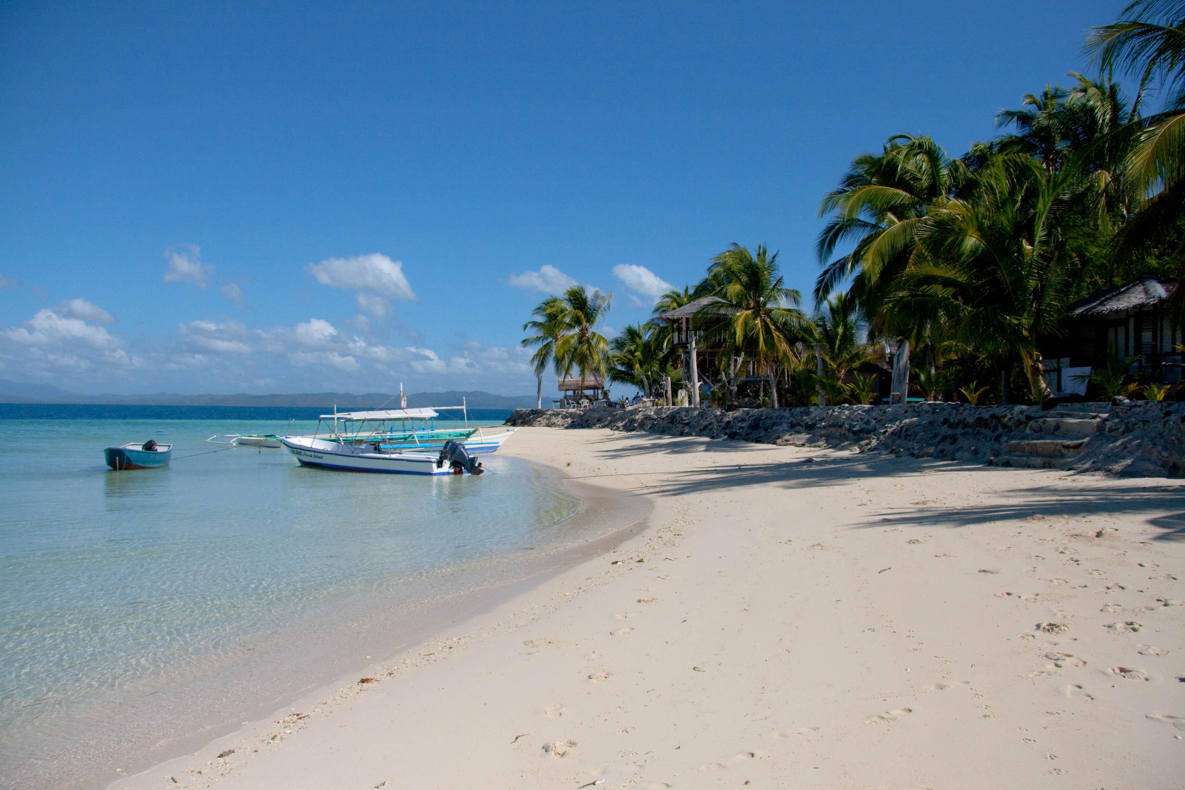 """""""Coco Loco Island"""""""