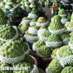 Taiwanese sugar apples