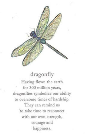 Meaning of Dragonfly Tattoo