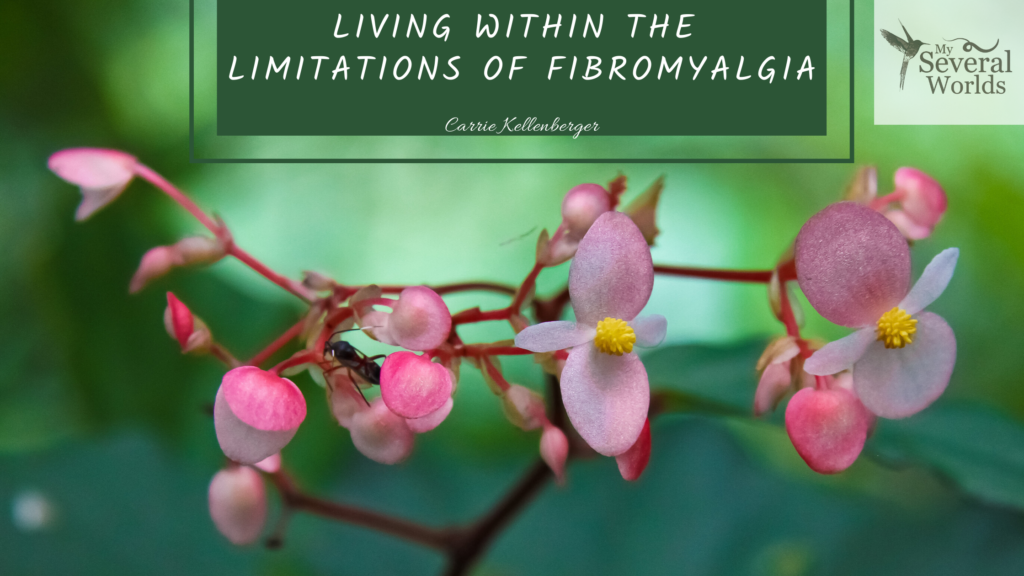 Life limitations with fibromyalgia and MECFS